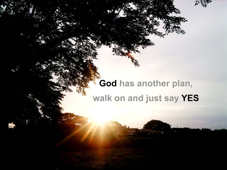 gods-plan.jpg